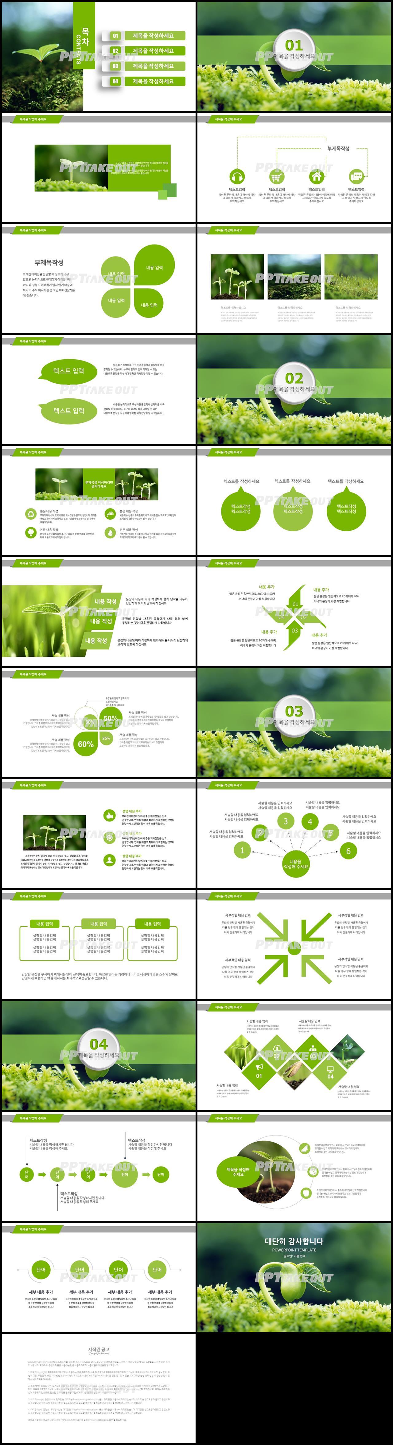 꽃과 동식물 주제 녹색 단아한 맞춤형 파워포인트서식 다운로드 상세보기