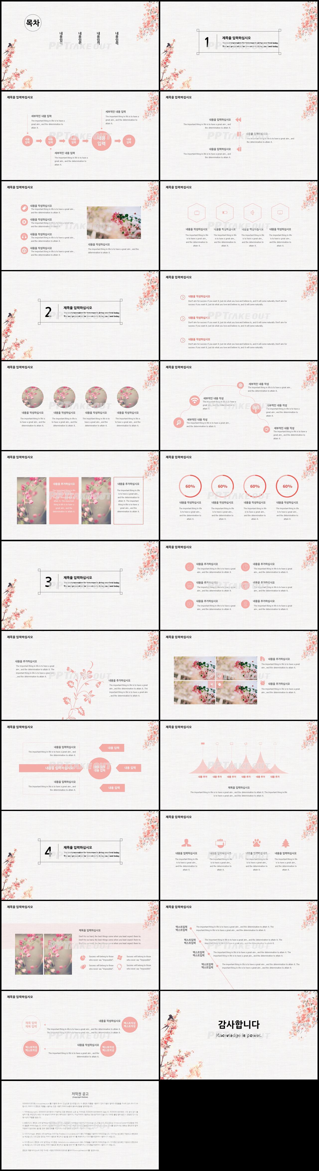 화초, 동식물 핑크색 수채화 프레젠테이션 파워포인트탬플릿 만들기 상세보기