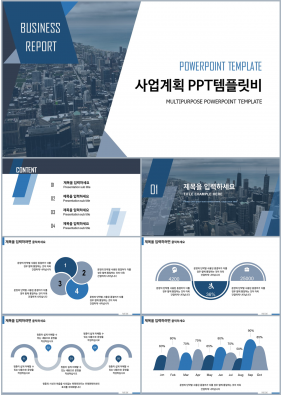 사업보고서 청색 현대적인 맞춤형 PPT샘플 다운로드